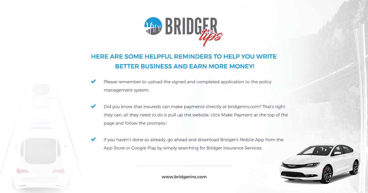Bridger Tips