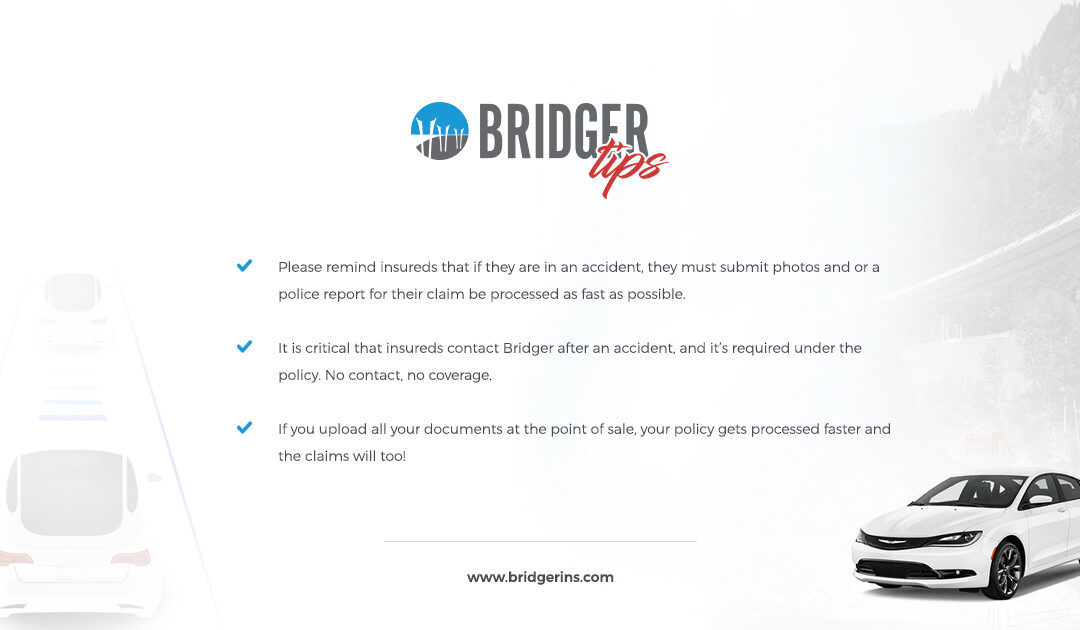 Bridger Tips 6.24.19