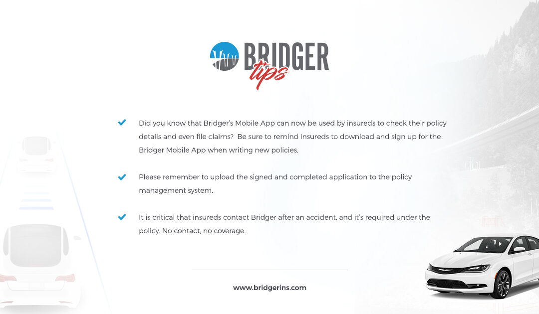 Bridger Tips 7.17.19