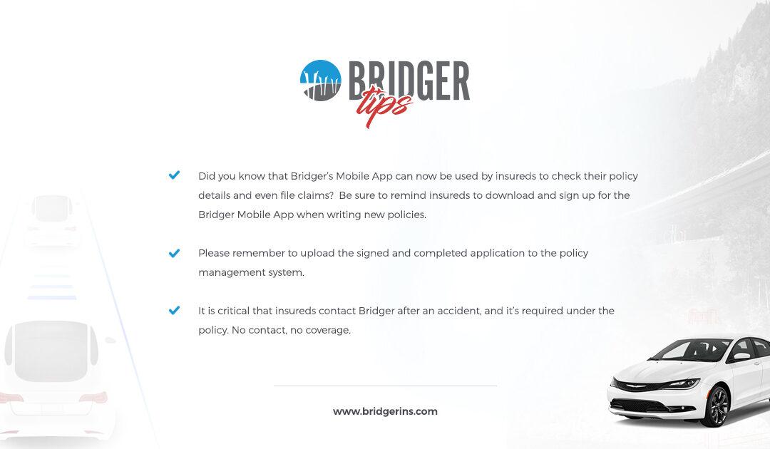 Bridger Tips 7.17.19