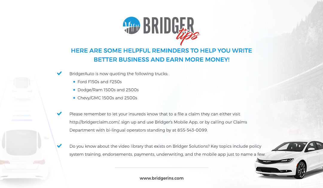 Bridger Tips 9.11.19